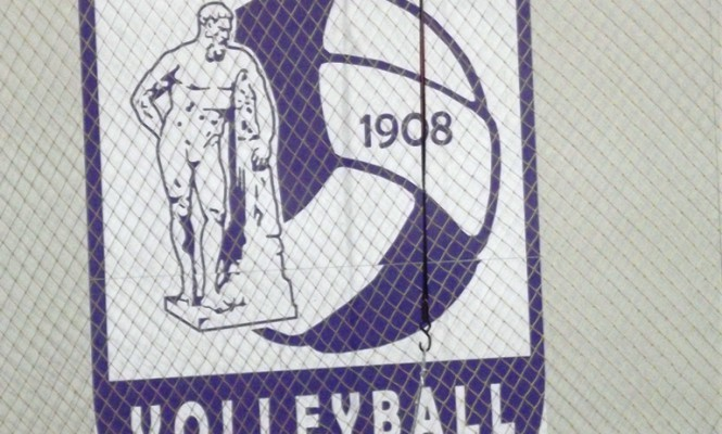 volley sima (2)